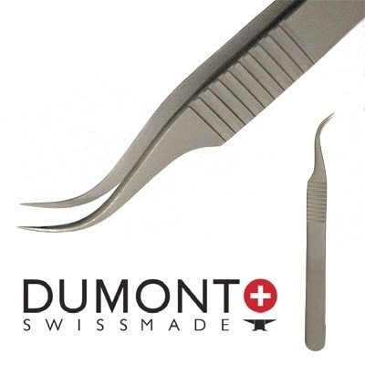 Dumont Volume tweezer (7SP inox 08)